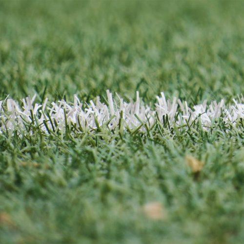 Field Field Line Football 54567